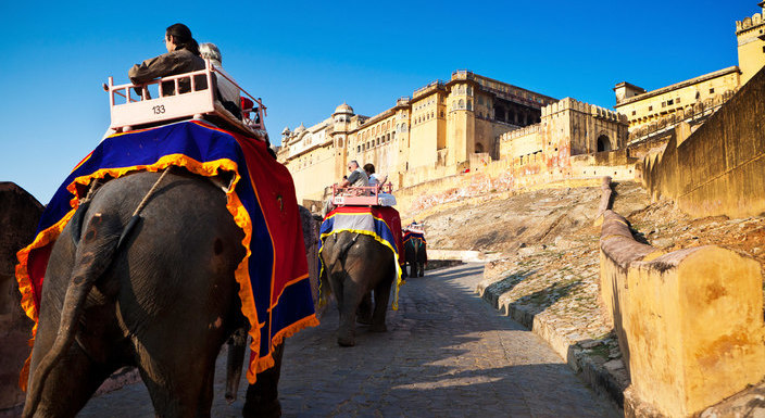 jaipur_tourist_elephants_ride_travelindiavacations