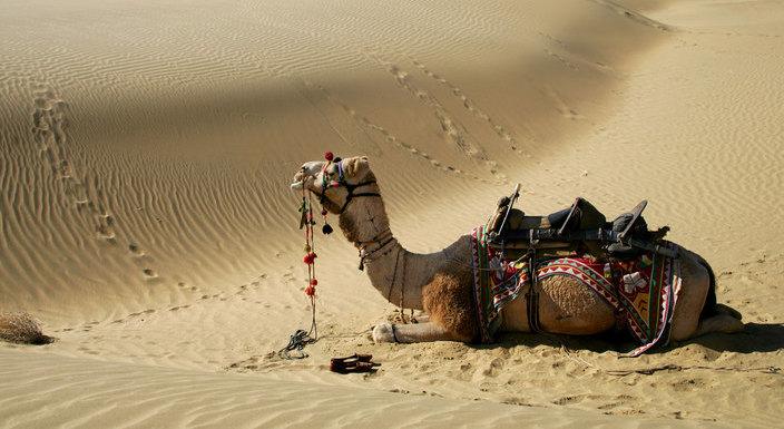 jaisalmer_travelindiavacations